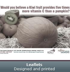Leaflets - Designed and printed