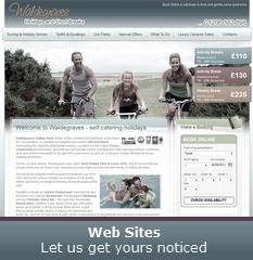Web Sites - Let us get yours noticed